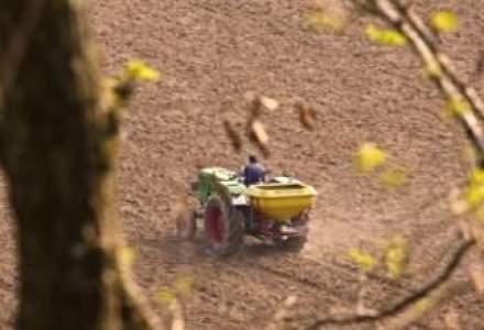 Tranzactie gigant in agricultura: un fond de investitii britanic preia 13.000 ha la Dunare