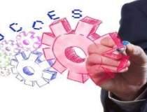 Idei de afaceri pentru...