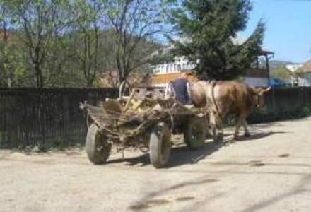 ANALIZA Zece paradoxuri in economia satului romanesc. Ce puncte tari si ce puncte slabe are spatiul rural