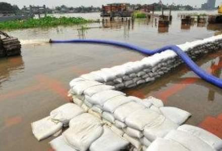 Dezastrele naturale au provocat in 2013 pagube de peste 125 miliarde dolari la nivel mondial