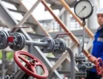 Producția de gaze din UE, în...