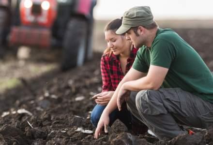 Guvernul a aprobat cadrul prin care tinerii fermieri pot obţine, prin concesiune, 50 de hectare de la stat