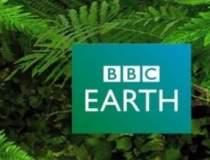 BBC lanseaza 3 televiziuni la...