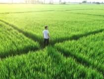 Tinerii fermieri pot...