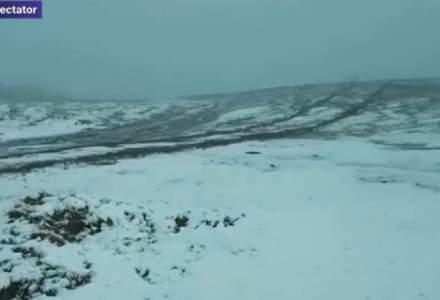 FOTO   Prima zăpadă din acest sezon, pe Transalpina