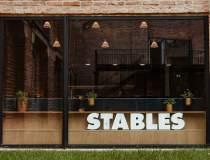 (P) STABLES, cel mai nou...