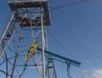 Companiile energetice de stat...
