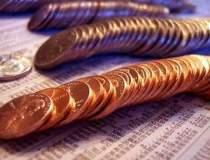Olteanu: Rata creditelor...