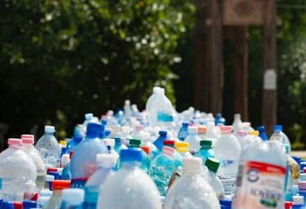 Cum poți recicla sticle din plastic și primi la schimb fructe și legume