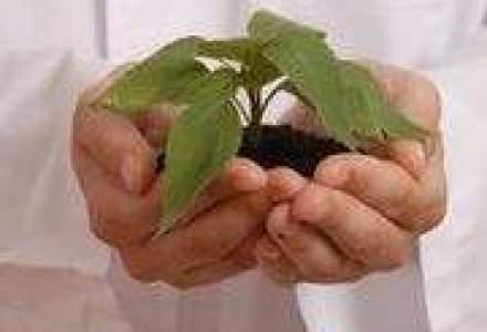 Suprafetele cultivate ecologic s-ar putea tripla pana in 2015