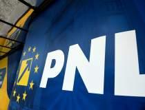 Nepotisme la PNL: Bani de la...