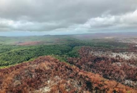 Insula Fraser din Australia se află sub cod ROȘU de inundații
