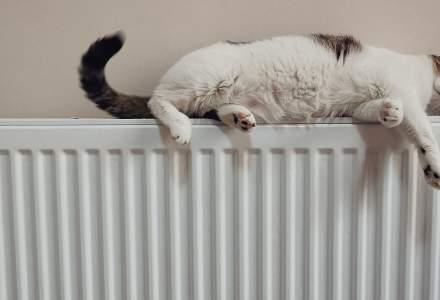 Guvernul alocă bani pentru a asigura livrarea de energie termică în trei orașe din țară