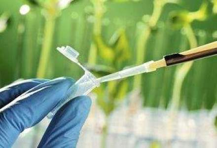 Samsung va investi cel putin 2 mld. de dolari in industria farmaceutica. Ce planuri are gigantul tehnologic in domeniul biotehnologiei?