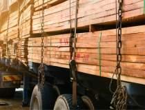 Piața lemnului: Amenzi uriașe...