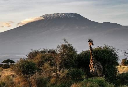 O agenție de turism lansează noi vacanțe charter din martie
