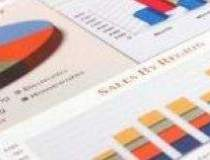 IMM-urile: Mediul economic...