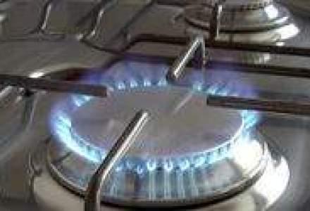 UE, ingrijorata de o posibila repetare a crizei gazului in august
