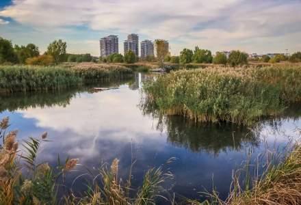 Primăria Capitalei ia în calcul preluarea administrării Parcului Național Văcărești