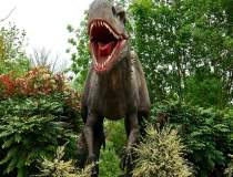 Un paleontolog maghiar a...