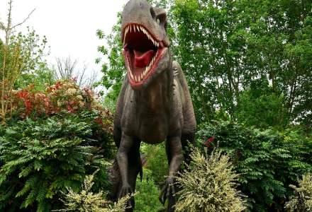 Un paleontolog maghiar a redescoperit un sit al dinozaurilor din Transilvania