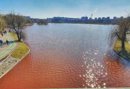 Fenomen bizar în parcul IOR din București. Apa este roșie