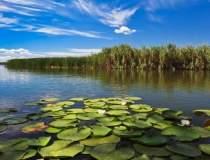 Delta Dunarii, apreciata si...