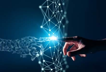 Cine sunt actorii digitalizării din sectorul public