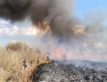 Cinci hectare de stuf au ars...