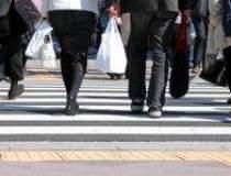 Rata somajului din Japonia,...
