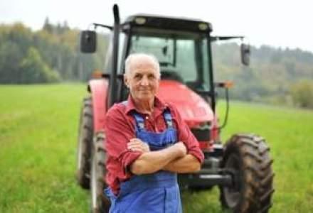 Vesti bune in economie: Romania a produs in acest an o cantitate-record in agricultura
