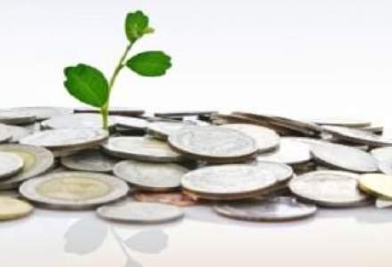 Accace: Serviciile de consultanta pentru investitorii straini au crescut cu 30% in primul semestru