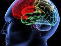 Cum ne antrenam creierul...