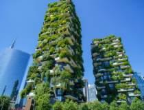 Top 10 cele mai eco-friendly...