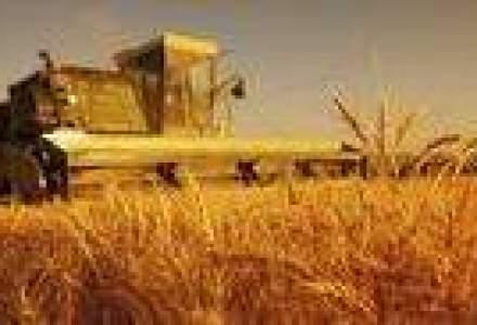 BCR: Unii investitori straini au venit in Romania doar pentru a specula preturile terenurilor arabile