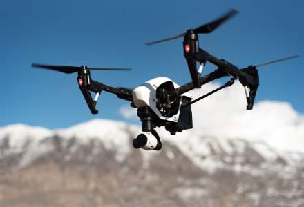 Insecta de la care este inspirat mecanismul de zbor al dronelor