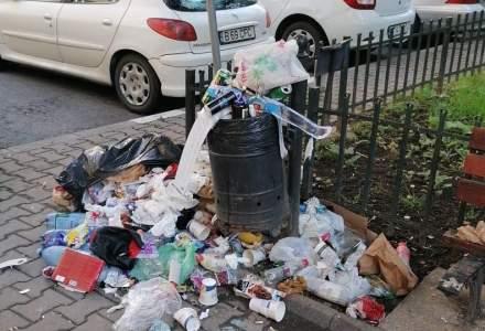 Mihaiu, deranjat de gunoiul din Sectorul 2: Nu putem mătura din oră-n oră