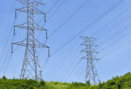 Electrica are rezerve de 500 mil. euro, pe care le va investi mai ales in eficientizarea retelelor