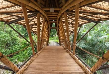 Povestea designerului care a părăsit New York-ul pentru a constui cele mai înalte și luxoase conace din bambus în Bali