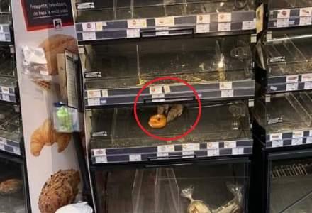 Reacția Mega Image după imaginile cu șobolanii din raionul de patiserie