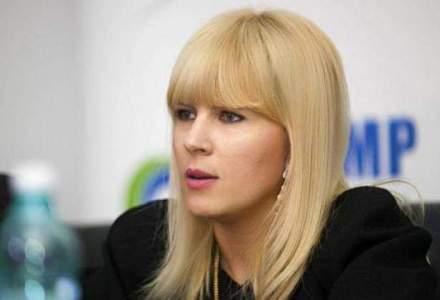 Elena Udrea: Ponta poarta un dublu discurs, una spune in afara tarii, alta in Romania