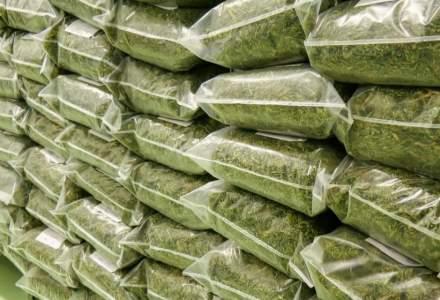 O țară asiatică a distrus droguri în valoare de o jumătate de miliard de dolari