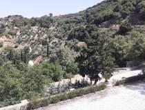 [FOTO] La munte, în Grecia:...