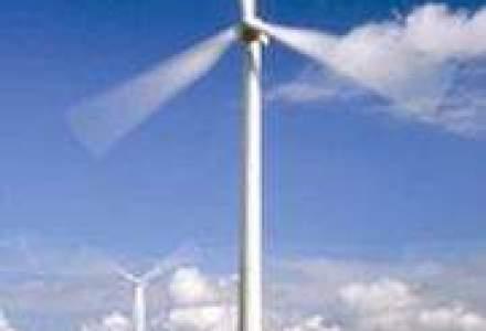 Parc eolian la Medgidia, investitie de 100 mil. euro