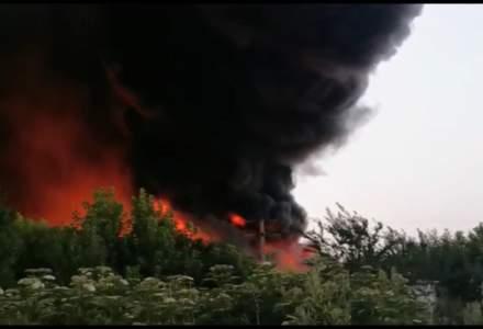 VIDEO | Incendiu puternic la un depozit de deșeuri din plastic din Salonta