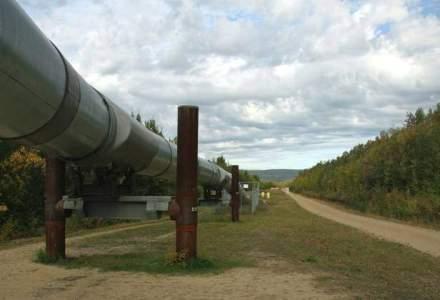 Rezerve pentru alegeri: Porosenko a anuntat acorduri cu Putin privind reluarea livrarilor de gaze, cu o saptamana inainte de alageri