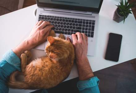 Care sunt provocările muncii de acasă