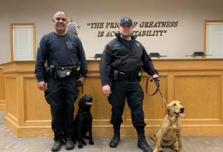 Primul stat care va folosi câinii în depistarea cazurilor de COVID