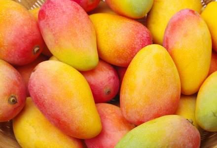 [VIDEO] Cum produce o companie olandeză piele vegană din mango
