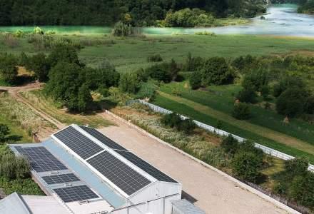 Un producător de mobilă din România investește 100.000 euro într-un sistem de panouri fotovoltaice